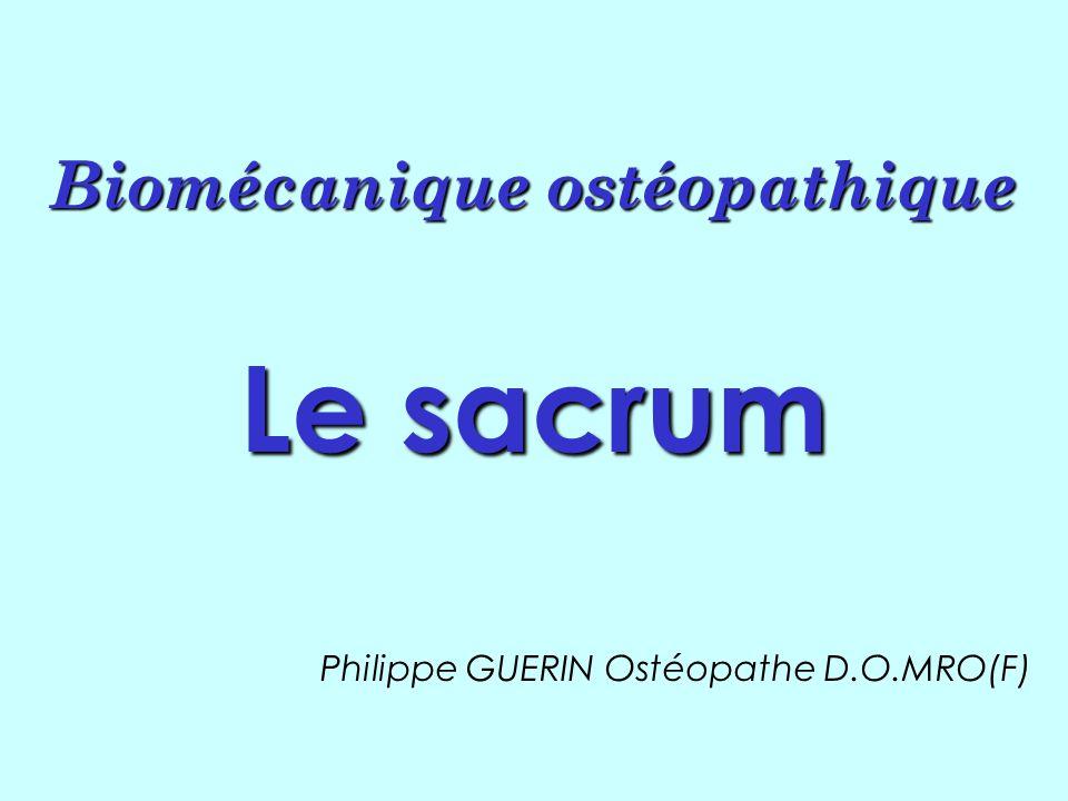 Biomécanique ostéopathique