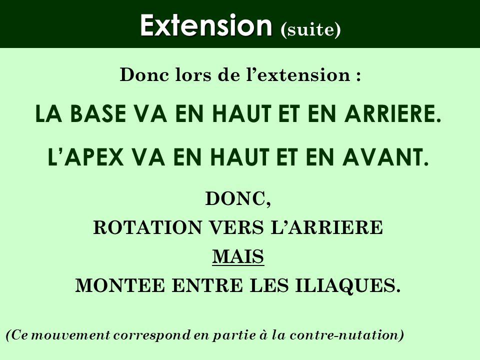 Extension (suite) LA BASE VA EN HAUT ET EN ARRIERE.