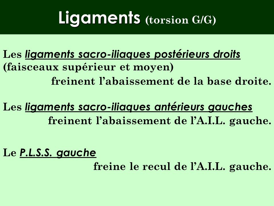Ligaments (torsion G/G)