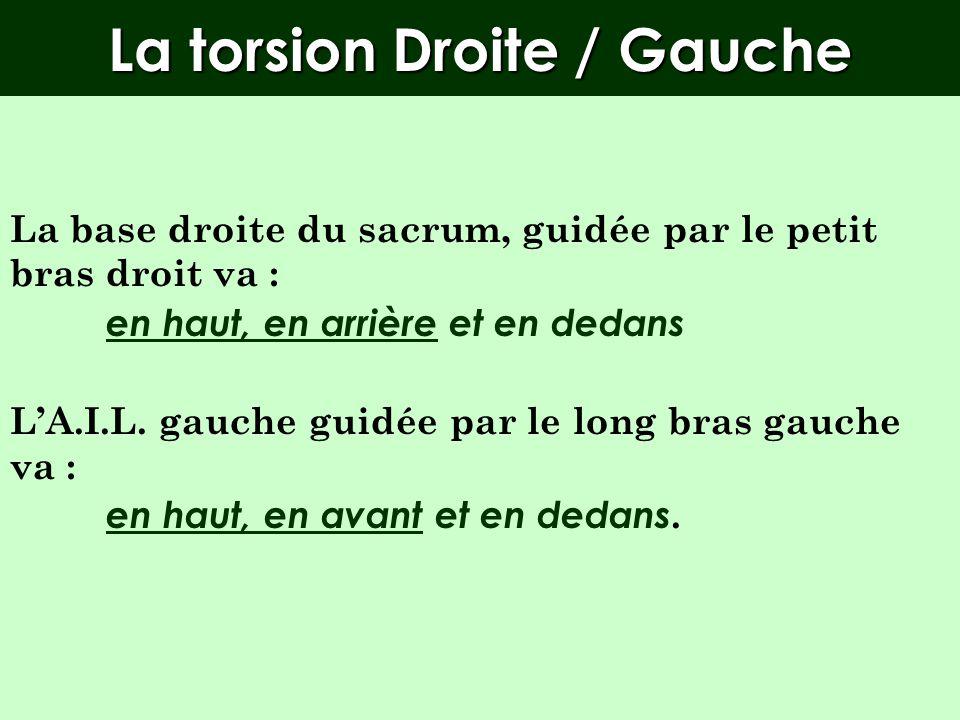 La torsion Droite / Gauche