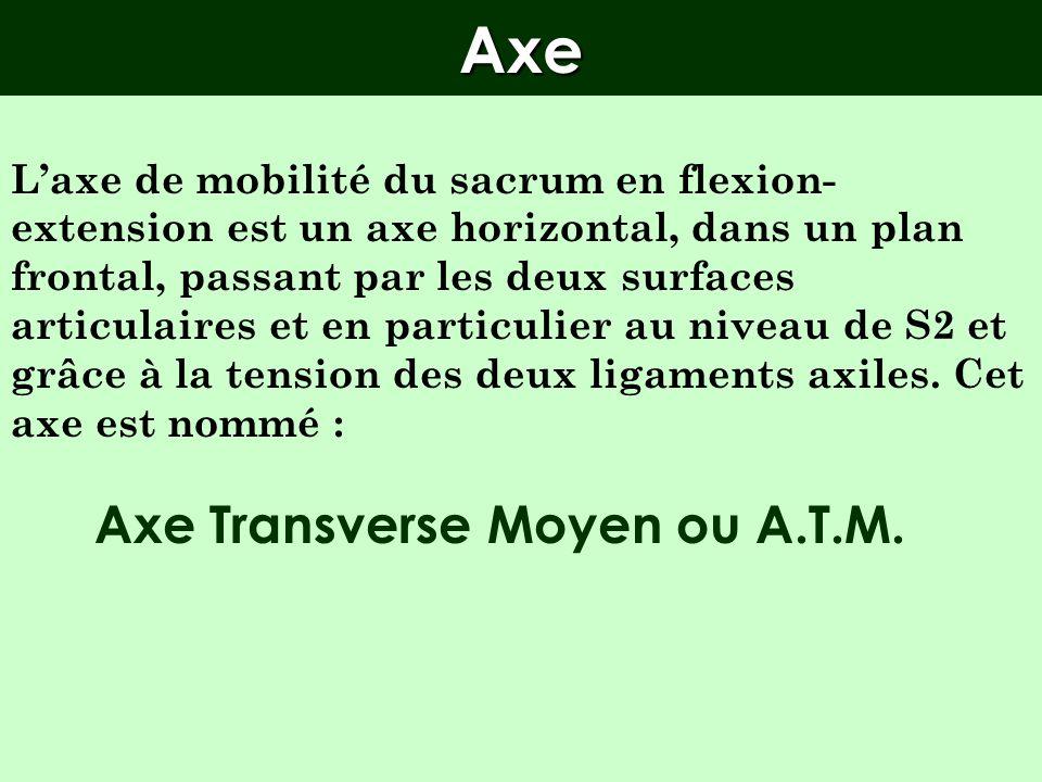 Axe Transverse Moyen ou A.T.M.