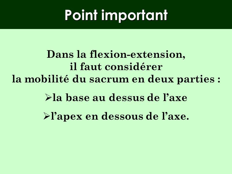 Point important Dans la flexion-extension, il faut considérer