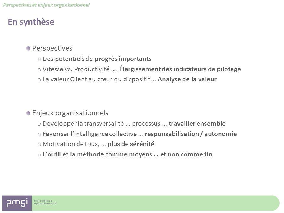 En synthèse Perspectives Enjeux organisationnels