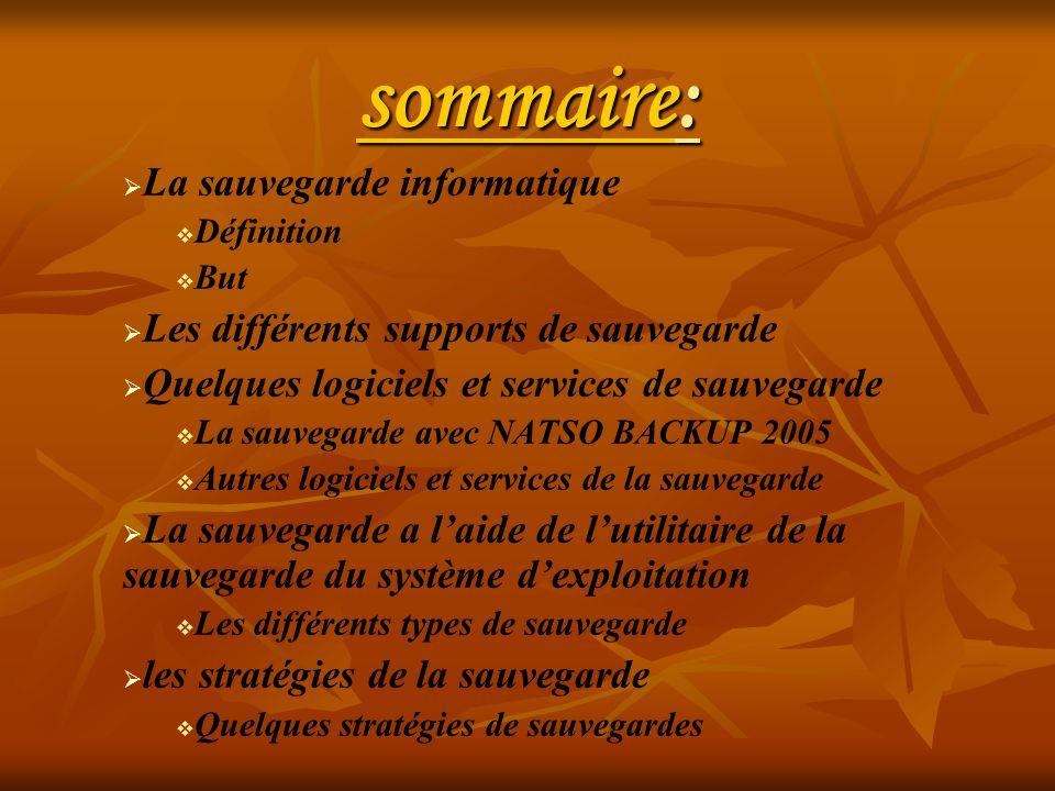 sommaire: La sauvegarde informatique