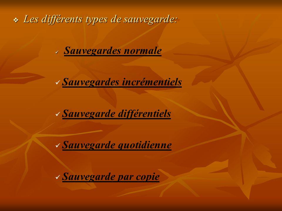 Les différents types de sauvegarde: