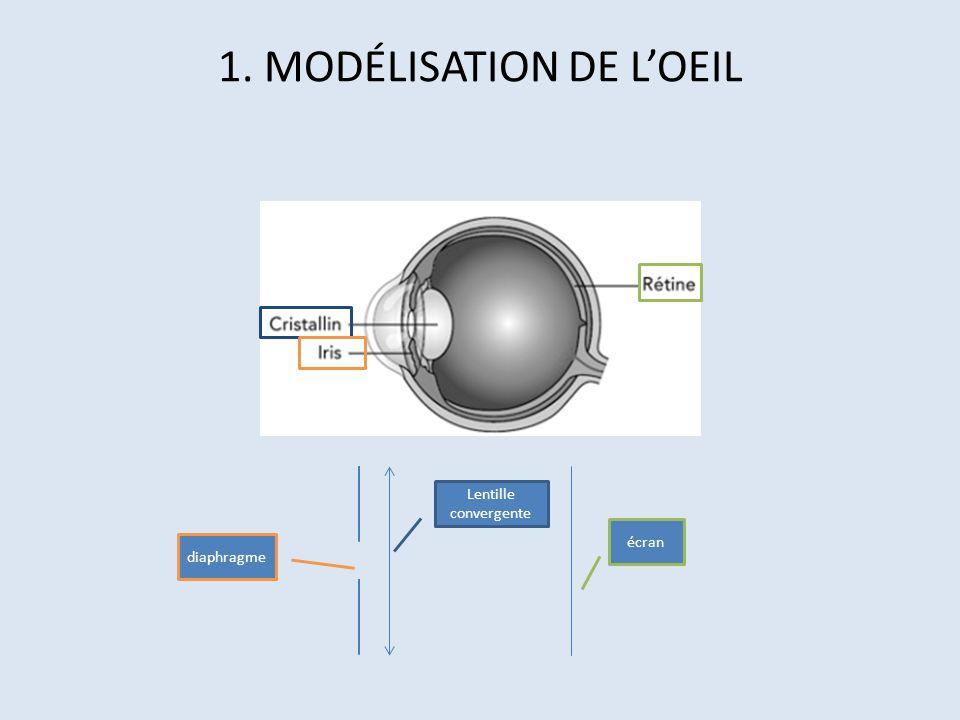 1. MODÉLISATION DE L'OEIL
