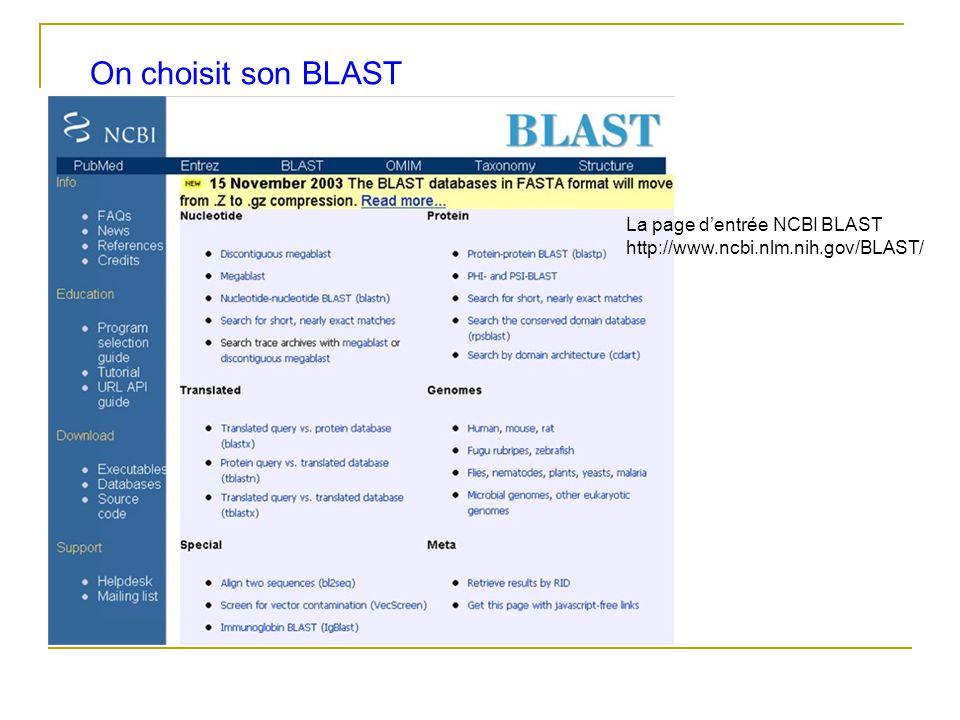 On choisit son BLAST La page d'entrée NCBI BLAST