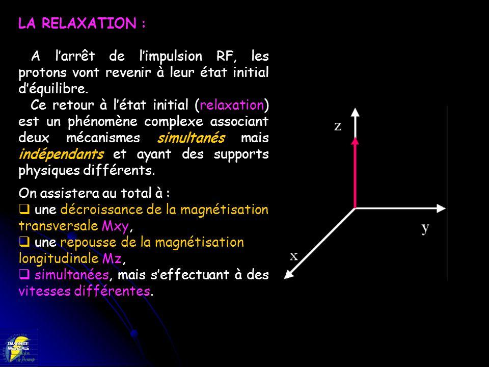 LA RELAXATION :A l'arrêt de l'impulsion RF, les protons vont revenir à leur état initial d'équilibre.