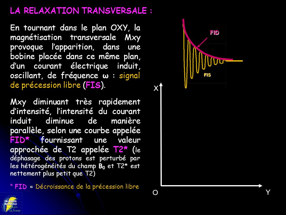 LA RELAXATION TRANSVERSALE :
