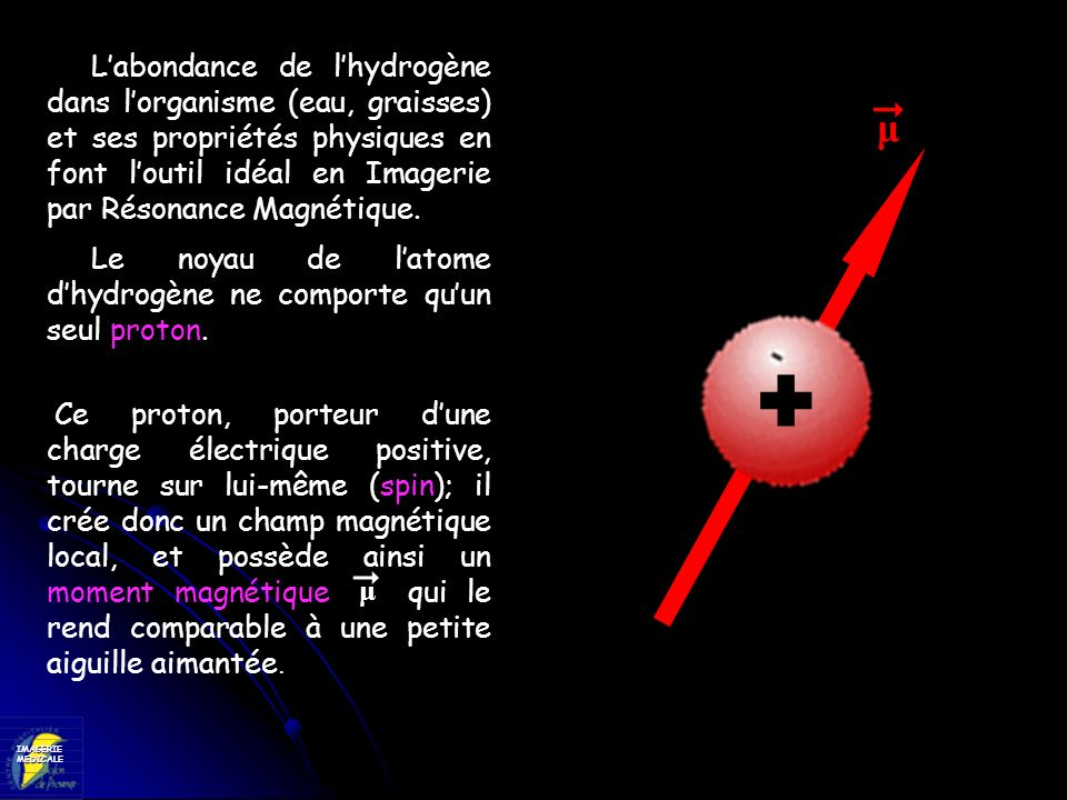 L'abondance de l'hydrogène dans l'organisme (eau, graisses) et ses propriétés physiques en font l'outil idéal en Imagerie par Résonance Magnétique.