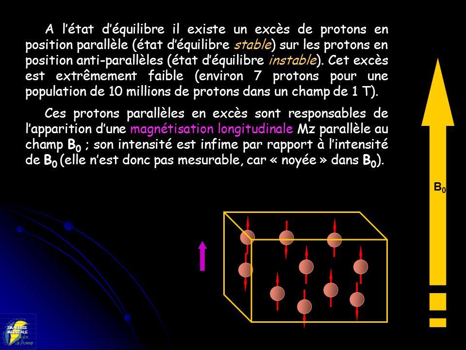 A l'état d'équilibre il existe un excès de protons en position parallèle (état d'équilibre stable) sur les protons en position anti-parallèles (état d'équilibre instable). Cet excès est extrêmement faible (environ 7 protons pour une population de 10 millions de protons dans un champ de 1 T).