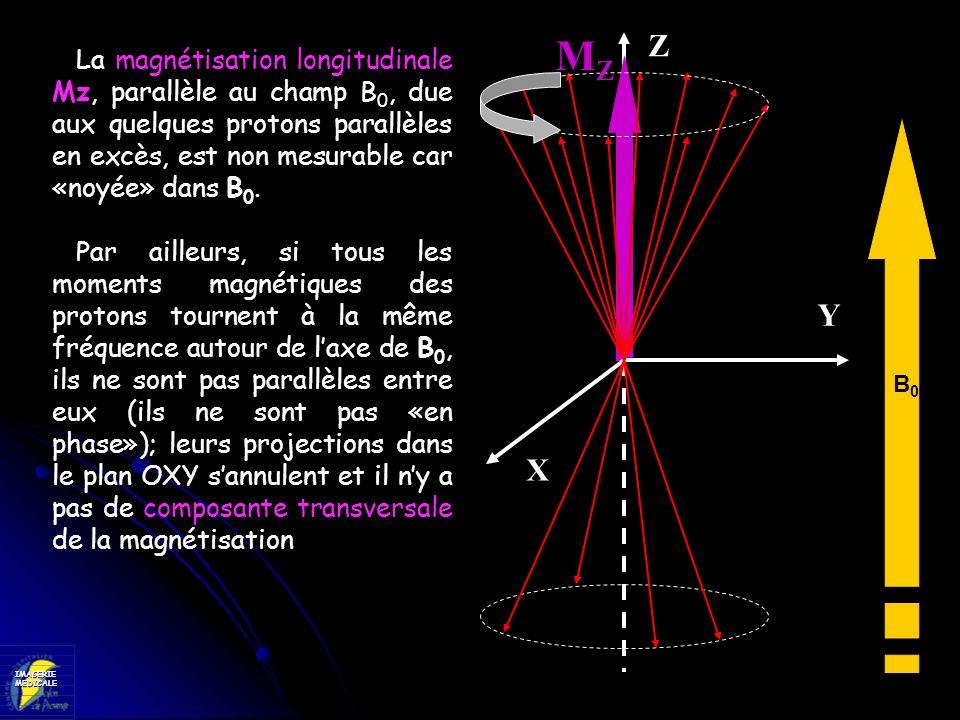MZZ. La magnétisation longitudinale Mz, parallèle au champ B0, due aux quelques protons parallèles en excès, est non mesurable car «noyée» dans B0.