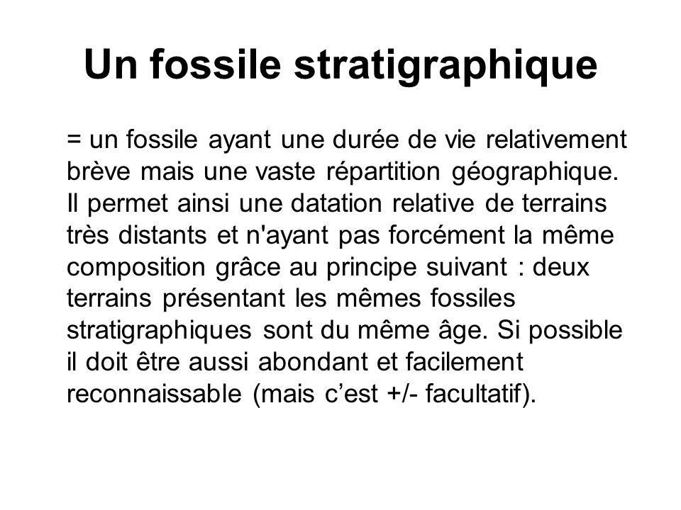 Un fossile stratigraphique