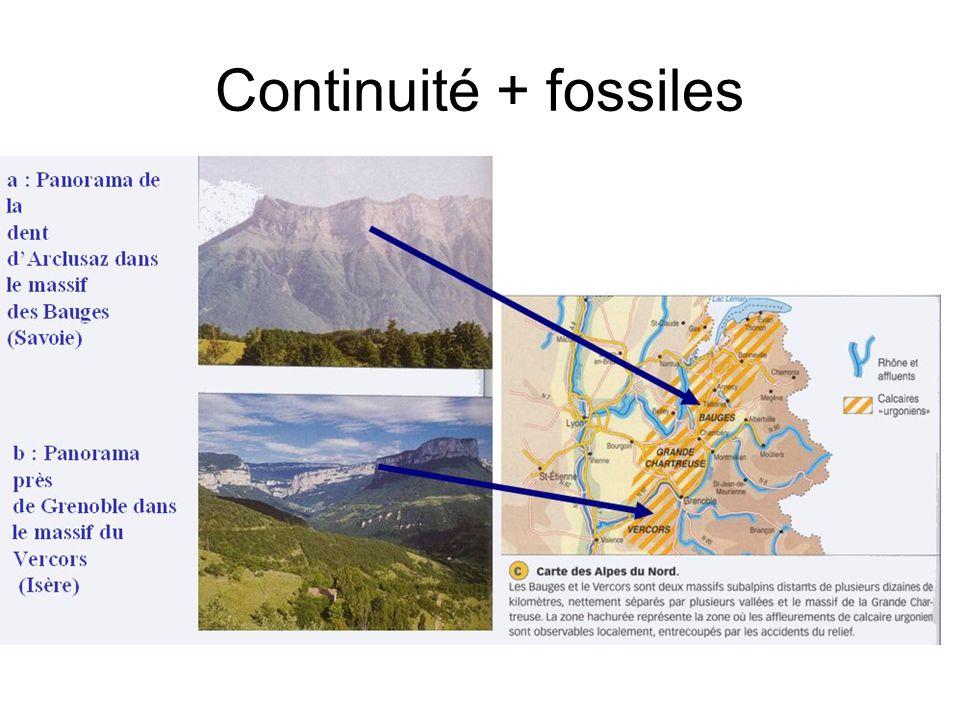 Continuité + fossiles