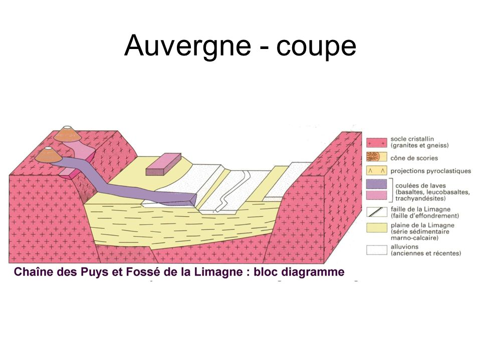 Auvergne - coupe