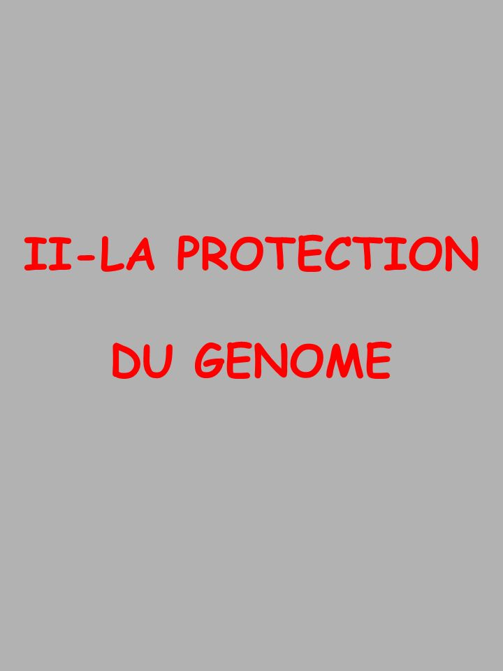 II-LA PROTECTION DU GENOME