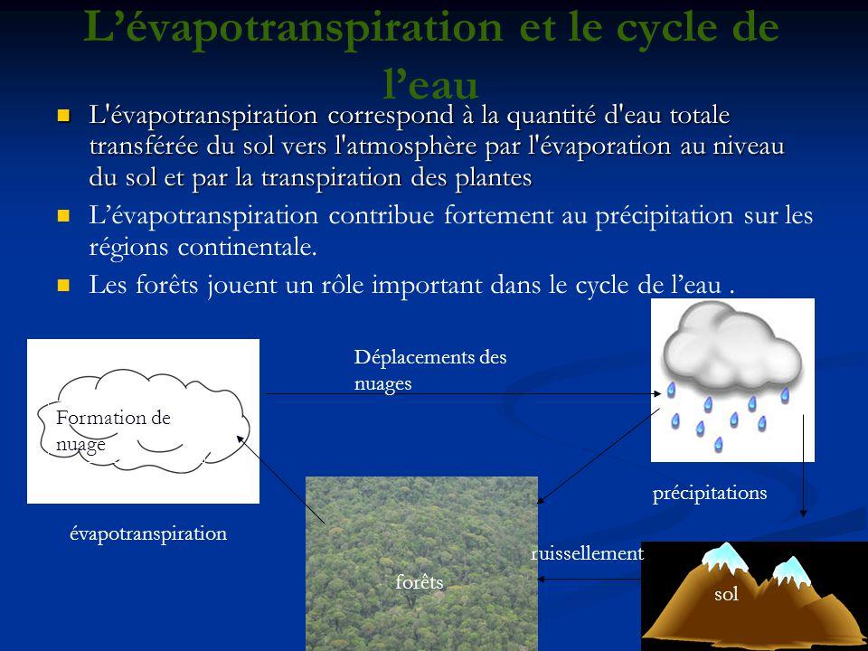 L'évapotranspiration et le cycle de l'eau