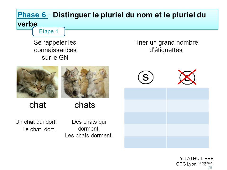 Phase 6 : Distinguer le pluriel du nom et le pluriel du verbe