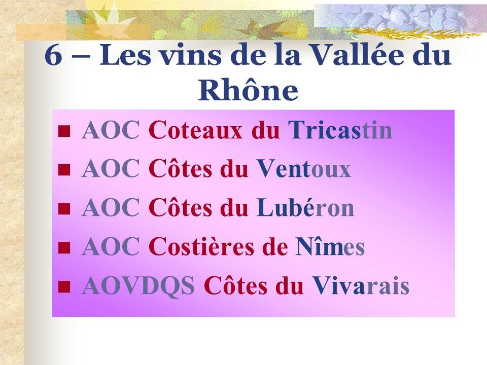6 – Les vins de la Vallée du Rhône