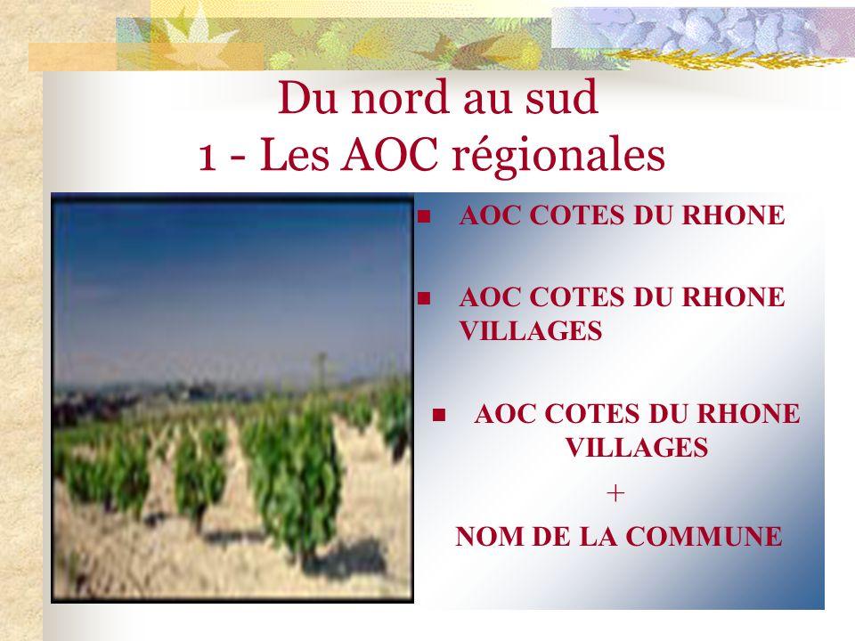 Du nord au sud 1 - Les AOC régionales