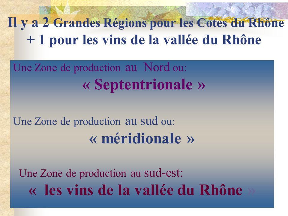 « les vins de la vallée du Rhône »
