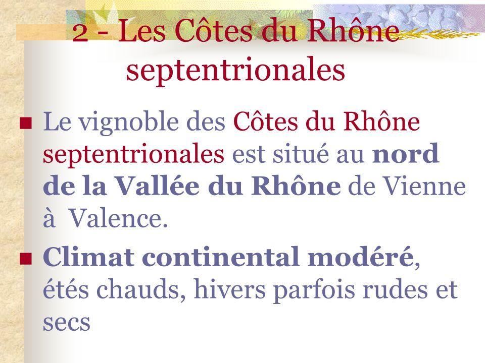 2 - Les Côtes du Rhône septentrionales