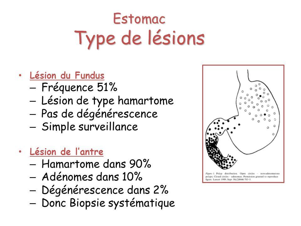 Estomac Type de lésions
