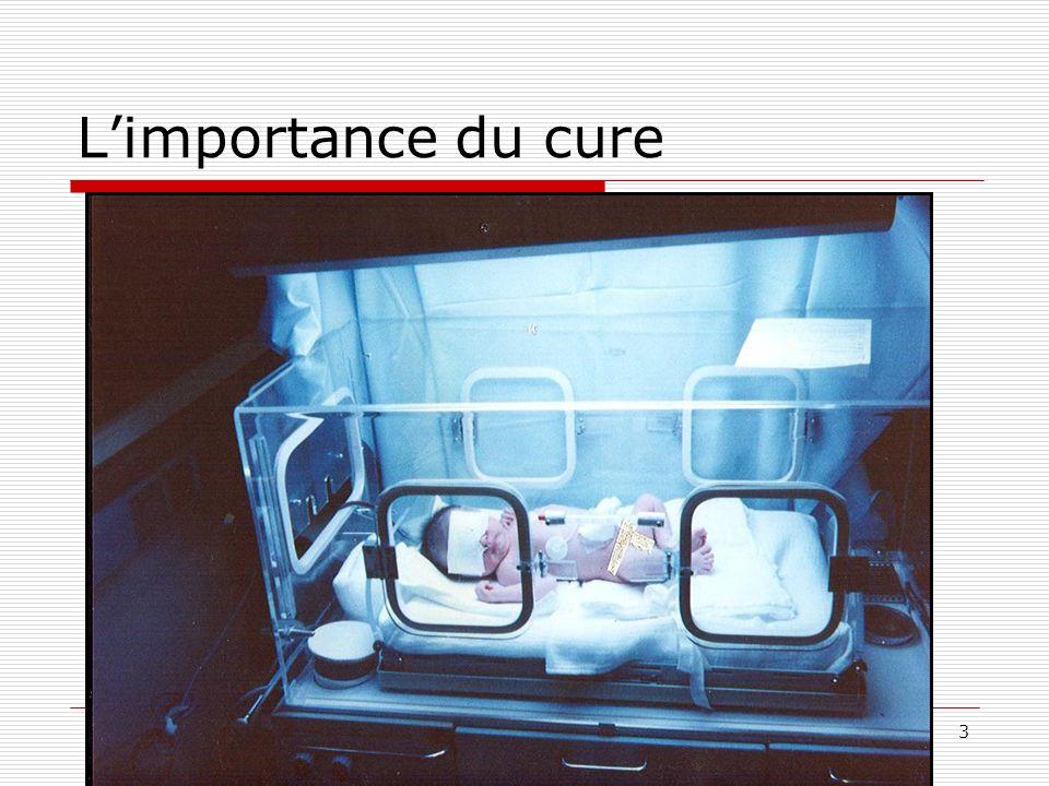 L'importance du cure