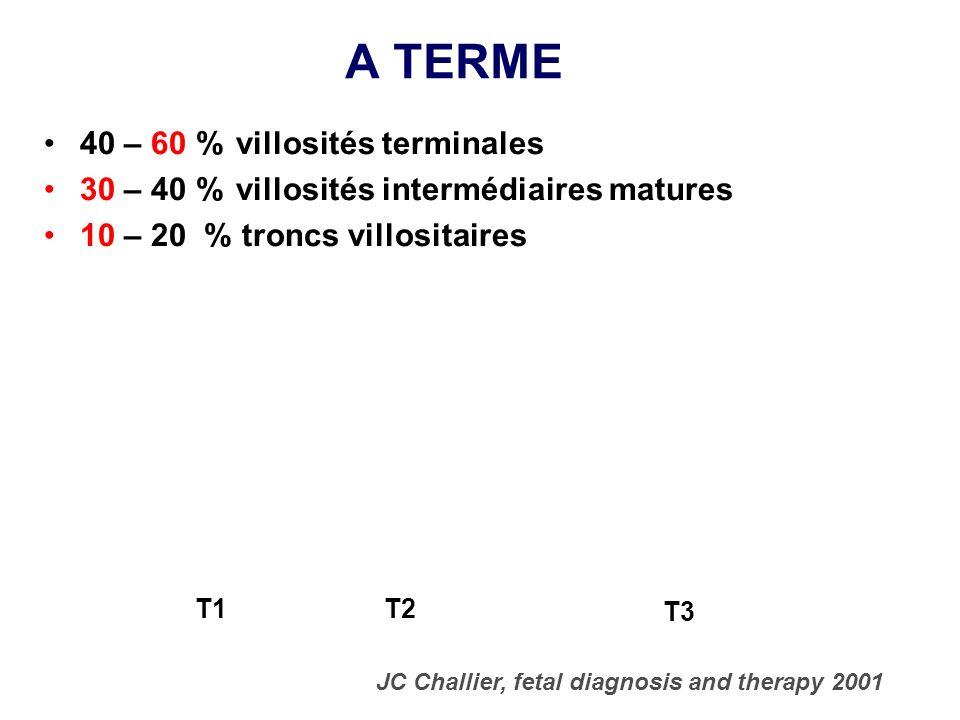 A TERME 40 – 60 % villosités terminales