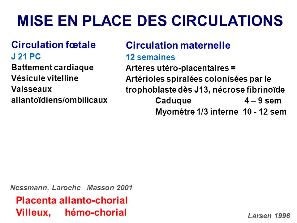 MISE EN PLACE DES CIRCULATIONS