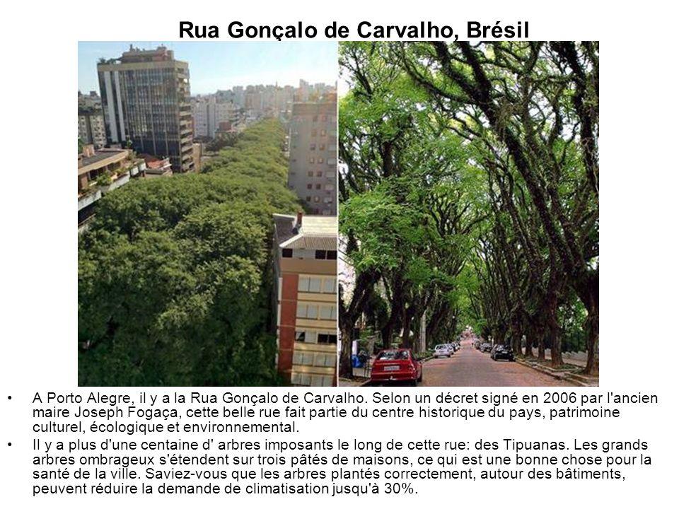 Rua Gonçalo de Carvalho, Brésil