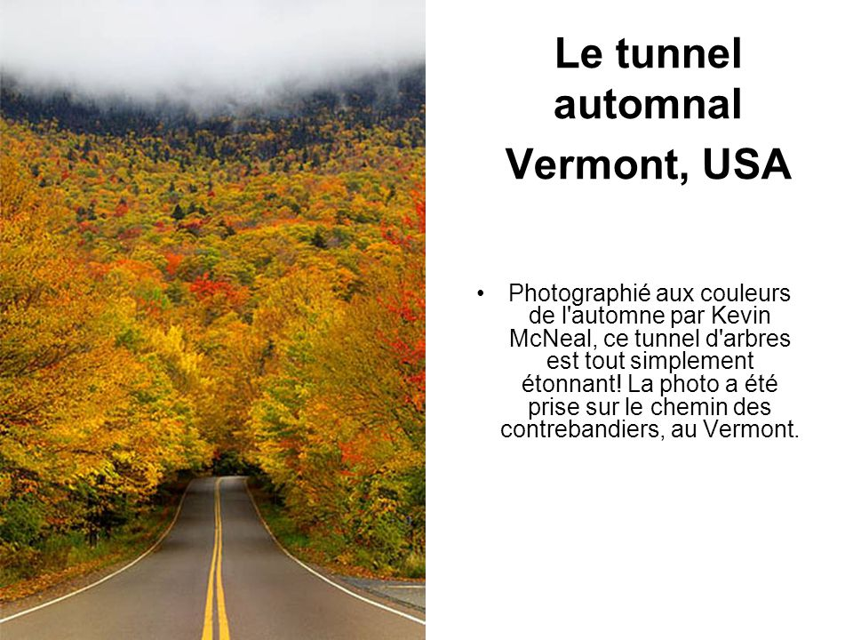 Le tunnel automnal Vermont, USA