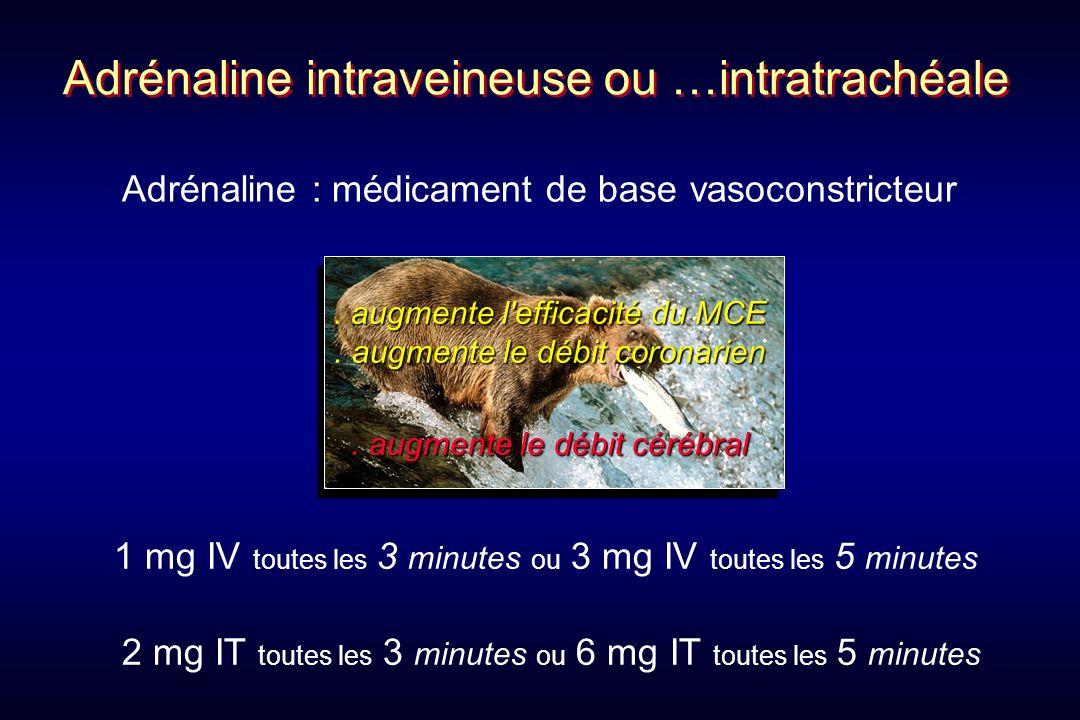 Adrénaline intraveineuse ou …intratrachéale