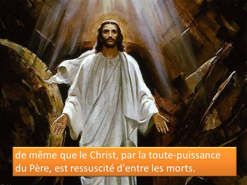 de même que le Christ, par la toute-puissance du Père, est ressuscité d entre les morts.