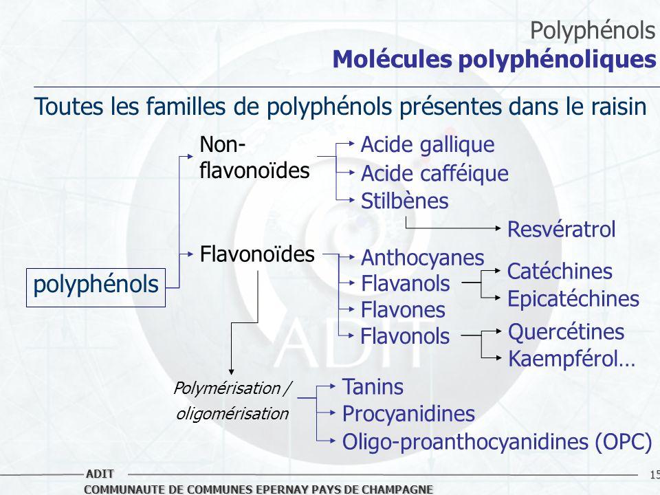 Polyphénols Molécules polyphénoliques