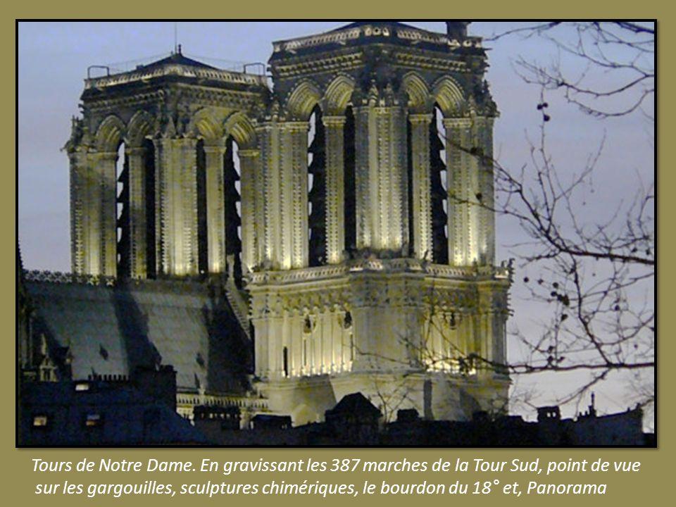 Tours de Notre Dame. En gravissant les 387 marches de la Tour Sud, point de vue