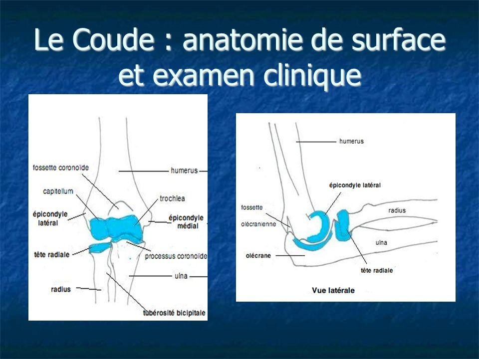 Le Coude : anatomie de surface et examen clinique