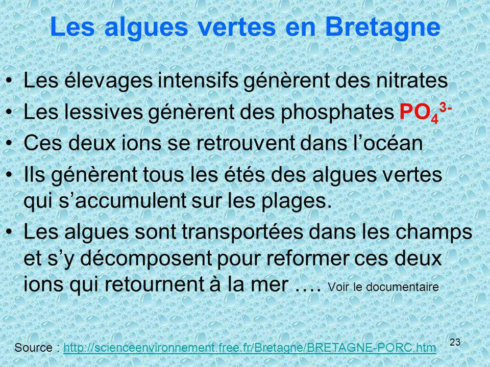 Les algues vertes en Bretagne