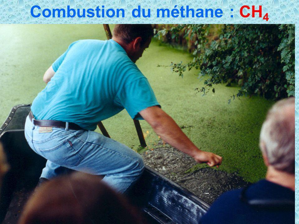 Combustion du méthane : CH4