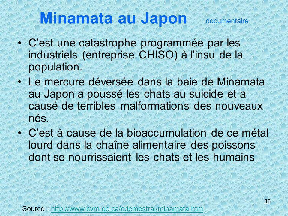 Minamata au Japon documentaire