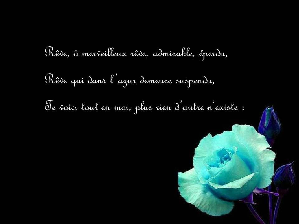 Rêve, ô merveilleux rêve, admirable, éperdu,