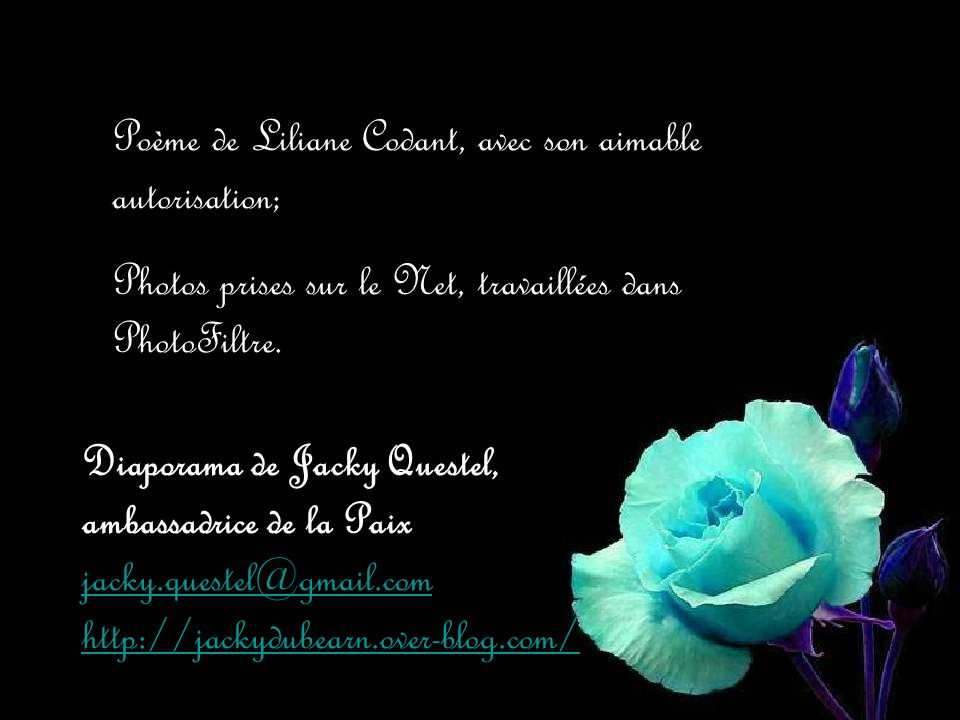 Poème de Liliane Codant, avec son aimable autorisation;