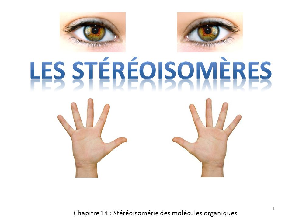 Les stéréoisomères Chapitre 14 : Stéréoisomérie des molécules organiques