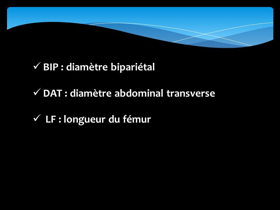 BIP : diamètre bipariétal
