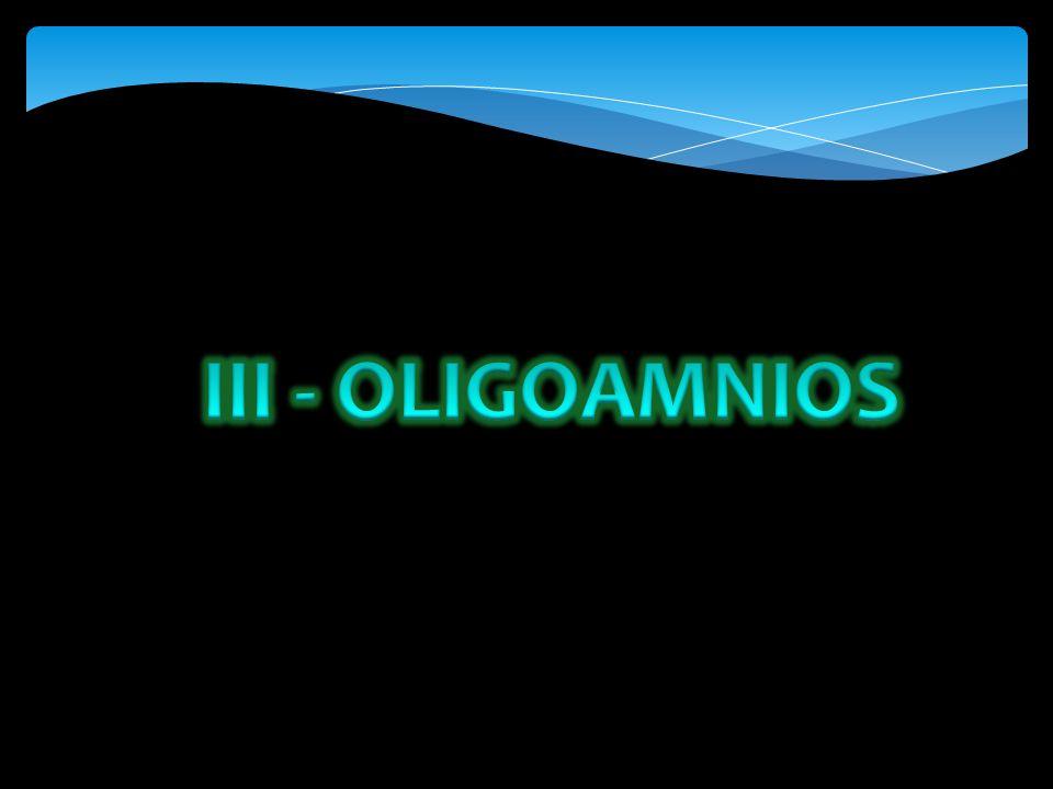 III - OLIGOAMNIOS
