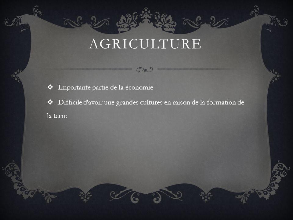 Agriculture -Importante partie de la économie