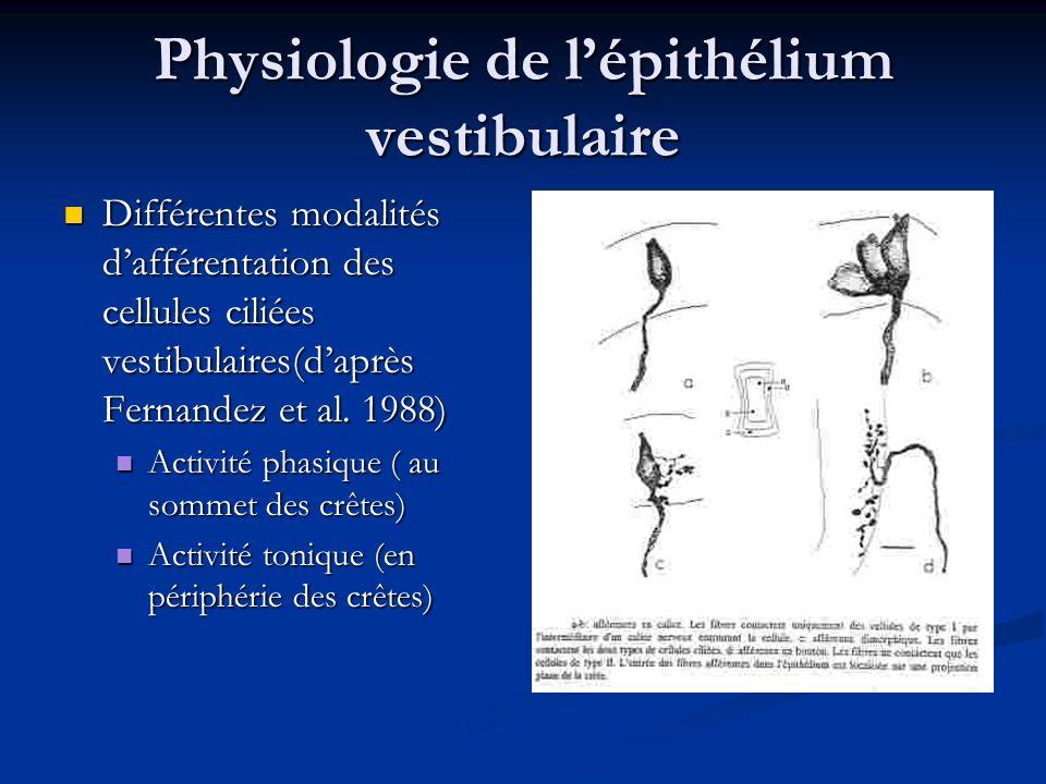 Physiologie de l'épithélium vestibulaire