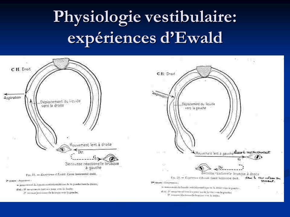 Physiologie vestibulaire: expériences d'Ewald