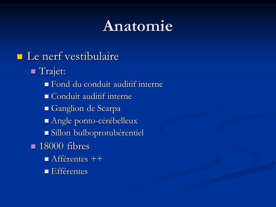 Anatomie Le nerf vestibulaire Trajet: 18000 fibres