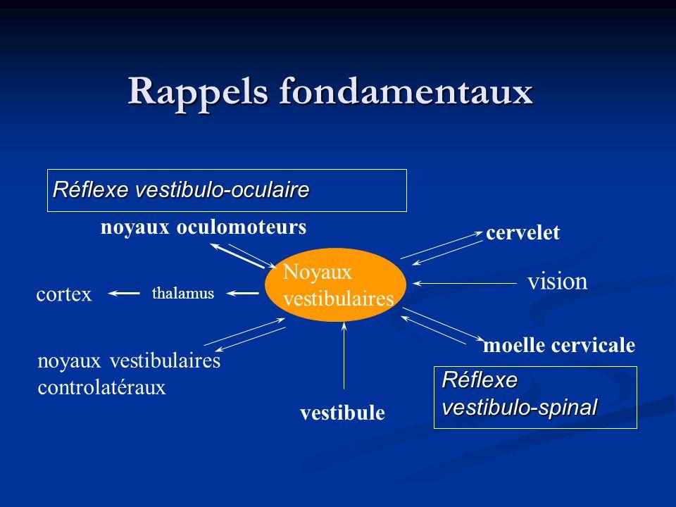 Rappels fondamentaux vision Réflexe vestibulo-oculaire